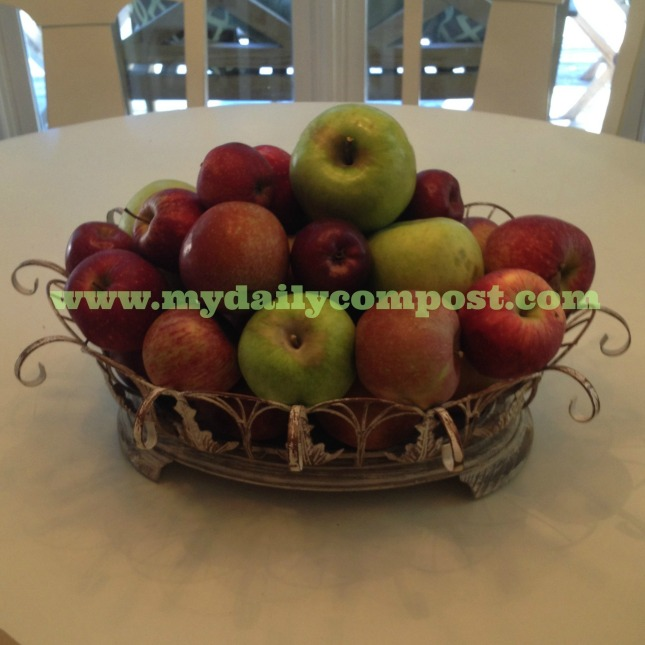 apple basket 10.8.13