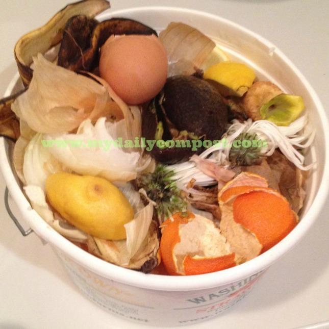 linguine clam sauce 2.6.14
