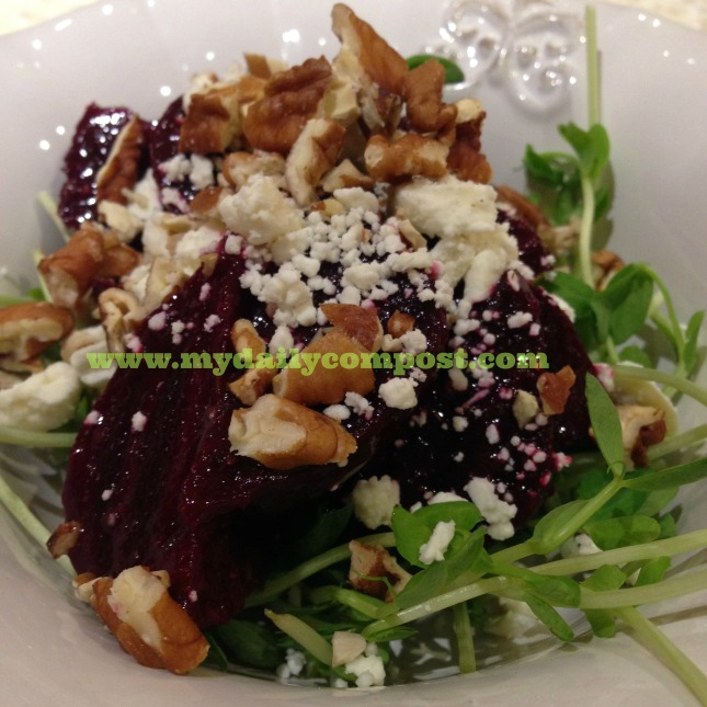 Beet & Pea Shoot Salad 2.2015