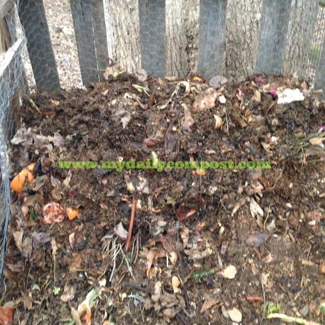 compost pile covered up 2.2015
