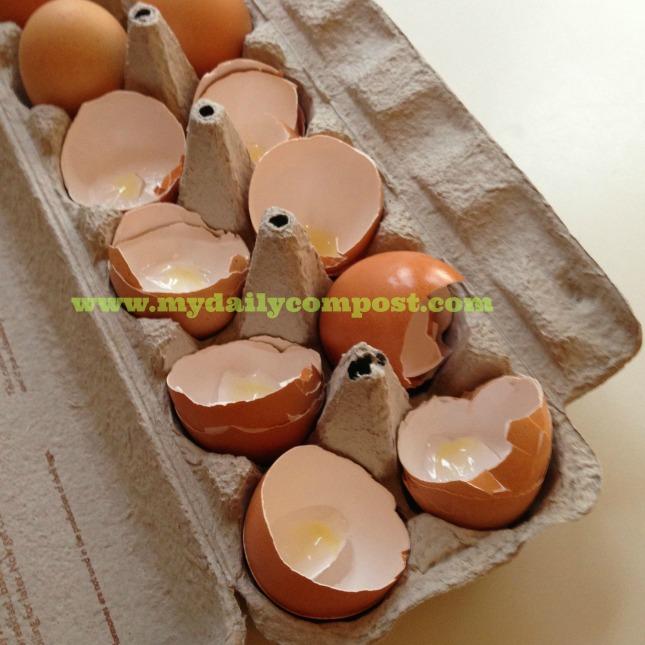 frittatta eggshells 2.15