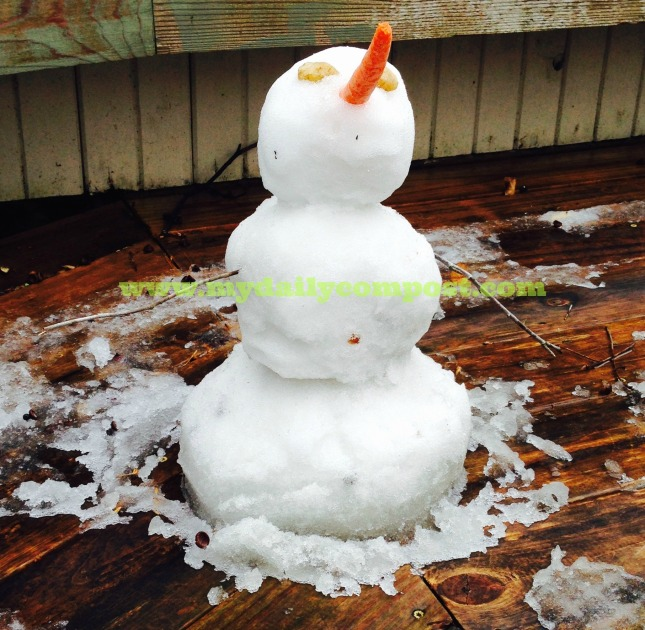 snowman 2015