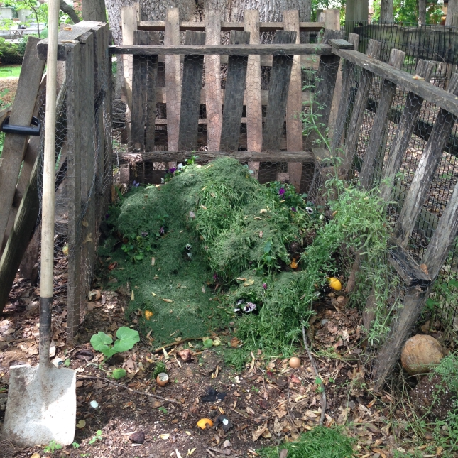 compost pile 5.2.16